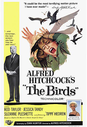 http://caughtinthemiddleman.files.wordpress.com/2008/02/birds.jpg